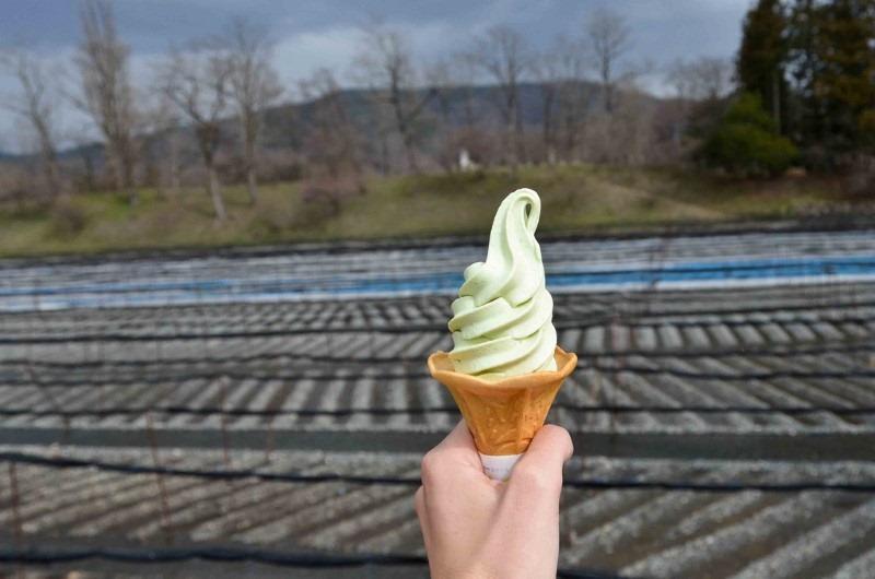 wasabi-ice-cream
